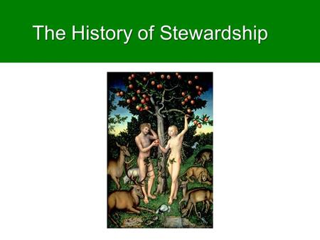 The History of Stewardship. Lesson aims  To show how texts like Genesis 1-2 have generated different readings in changing contexts  To encourage reflection.