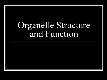 Organelle Structure and Function. Review Prokaryotes simple celled organisms No nucleus Eukaryotic cells multicellular organisms Nucleus organelles.