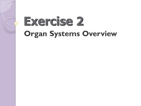 Exercise 2 Organ Systems Overview. Figure 2.7 Human torso model.