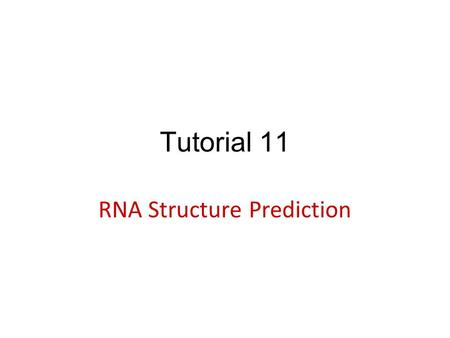 Tutorial 11 RNA Structure Prediction. Introduction – RNA secondary structure RNAfold – RNA secondary structure prediction TargetScan – microRNA prediction.