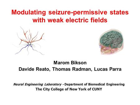Modulating seizure-permissive states with weak electric fields Marom Bikson Davide Reato, Thomas Radman, Lucas Parra Neural Engineering Laboratory - Department.