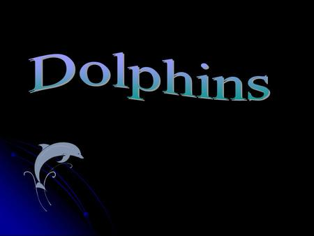 What do dolphins eat? Dolphins eat fish Crab sardine.