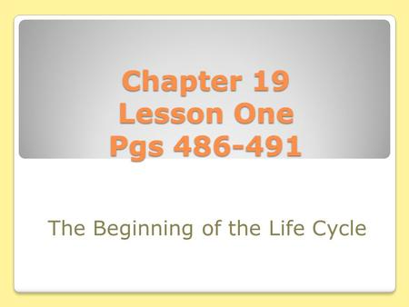 Chapter 19 Lesson One Pgs 486-491 The Beginning of the Life Cycle.