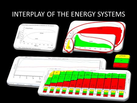 INTERPLAY OF THE ENERGY SYSTEMS. Quantifying intensity Calculation of Maximum Heart Rate The easiest and best known method to calculate your maximum heart.