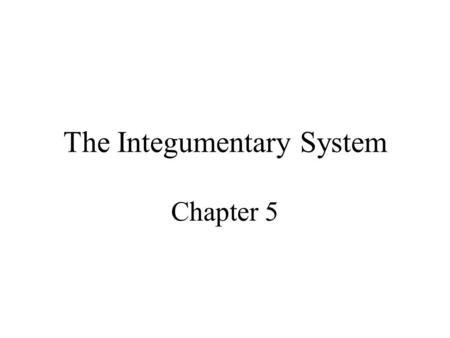 The Integumentary System Chapter 5. Integumentary System Structure –Epidermis –Dermis –Hypodermis Functions of the skin.