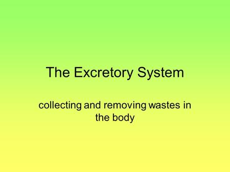 The Excretory System collecting and removing wastes in the body.