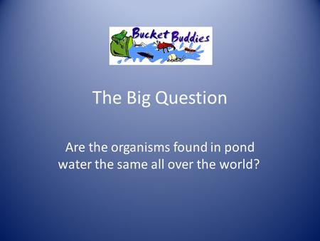 The Big Question Are the organisms found in pond water the same all over the world?