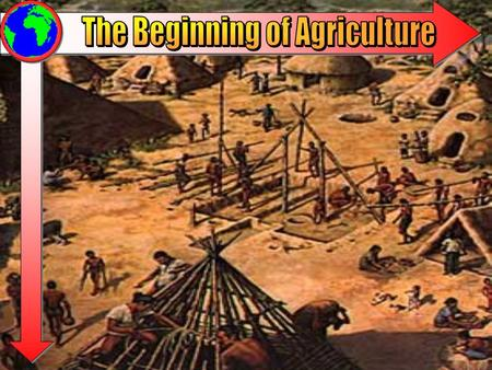 The New Stone Age 10000 BC- 4000 BC Sometimes termed the Agricultural Revolution. Humans begin to slowly domesticate plants and animals. Agriculture requires.