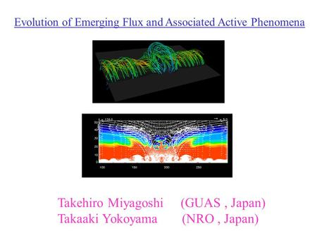 Evolution of Emerging Flux and Associated Active Phenomena Takehiro Miyagoshi (GUAS, Japan) Takaaki Yokoyama (NRO, Japan)