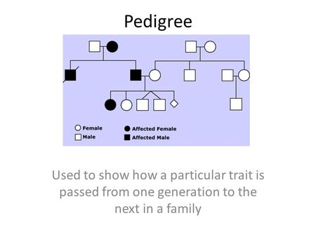 Pedigree Used to show how a particular trait is passed from one generation to the next in a family.