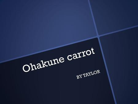 Ohakune carrot BY TAYLOR. Where is the Carrot in Ohakune The Carrot in Ohankune is in the main town.