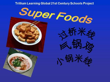 Trillium Learning Global 21st Century Schools Project.