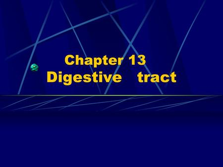 Chapter 13 Digestive tract. ---Digestive system: Digestive tract Digestive gland.