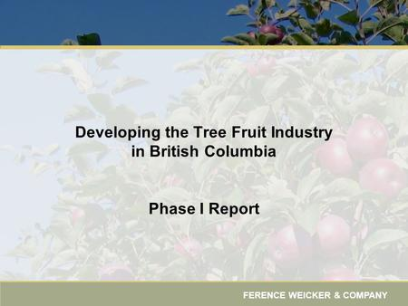 FERENCE WEICKER & COMPANY Developing the Tree Fruit Industry in British Columbia Phase I Report.