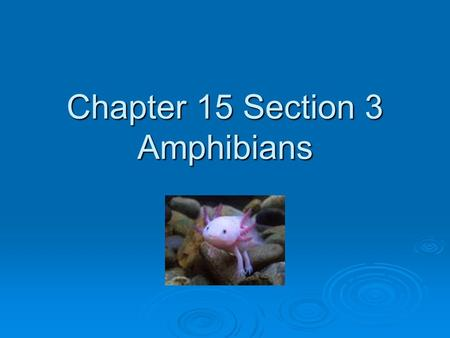 Chapter 15 Section 3 Amphibians. Standard: The anatomy and physiology of animals illustrate the complementary nature of structure and function EQ: Explain.