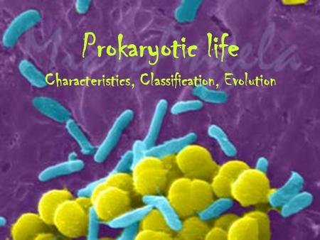Prokaryotic life Characteristics, Classification, Evolution.