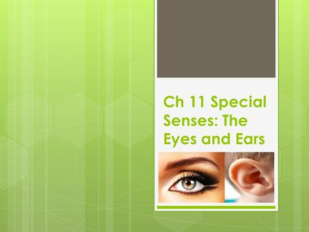 Ch 11 Special Senses: The Eyes and Ears. Terms for Eyes  Iris- ir/i, ir/o, irid/o, irit/o- controls the amount of light entering the eye  Lens- phac/o-