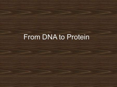 From DNA to Protein. Remember Genes On Chromosomes??? Some genes contain the instructions to make a protein.