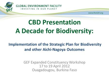 CBD Presentation A Decade for Biodiversity: Implementation of the Strategic Plan for Biodiversity and other Aichi-Nagoya Outcomes GEF Expanded Constituency.