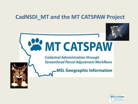CadNSDI_MT and the MT CATSPAW Project. Vision – is the vision of BLM's National PLSS Data Steward, that digital PLSS information be maintained, integrated,