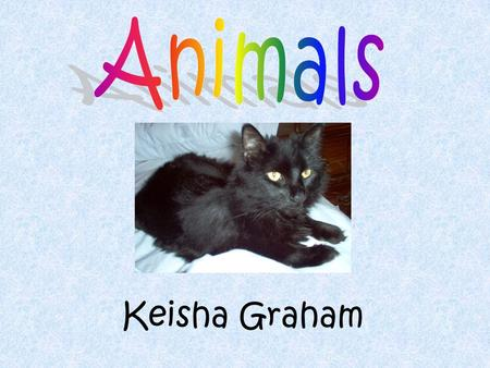 Keisha Graham. Table of Contents 1.Title Slide 2.Table of Contents 3.Georgia Performance Standards 4.Day One's Activities 5.Animal Word Web 6.Bar Chart.