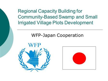 WFP-Japan Cooperation Regional Capacity Building for Community-Based Swamp and Small Irrigated Village Plots Development.