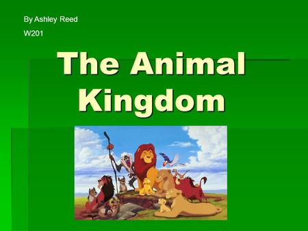 The Animal Kingdom By Ashley Reed W201 W201. What is the Animal Kingdom??  All the different types of animals on earth  How we classify the animals,
