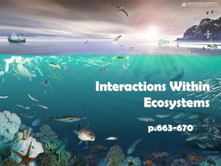 Interactions Within Ecosystems p.663-670. Competition Competition is the struggle between organisms to survive in a habitat with limited resources. One.