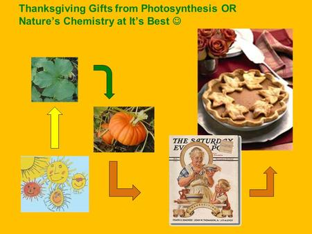 Thanksgiving Gifts from Photosynthesis OR Nature's Chemistry at It's Best.