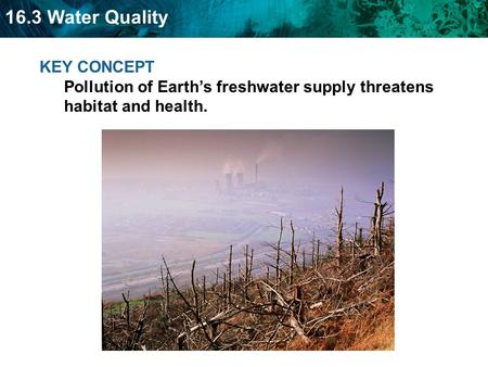 16.3 Water Quality KEY CONCEPT Pollution of Earth's freshwater supply threatens habitat and health.