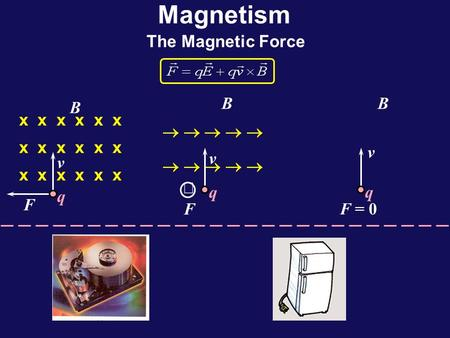 Magnetism The Magnetic Force x x x v F B q  v F B q   v F = 0 B q.
