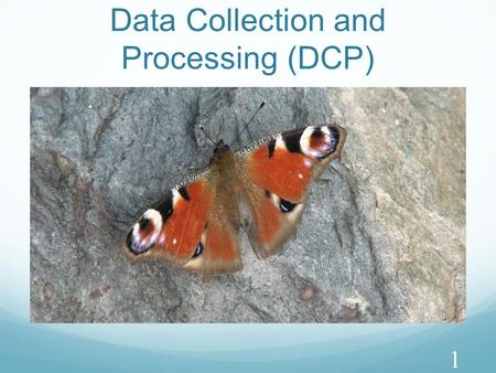 Data Collection and Processing (DCP) 1. Key Aspects (1) DCPRecording Raw Data Processing Raw Data Presenting Processed Data CompleteRecords appropriate.