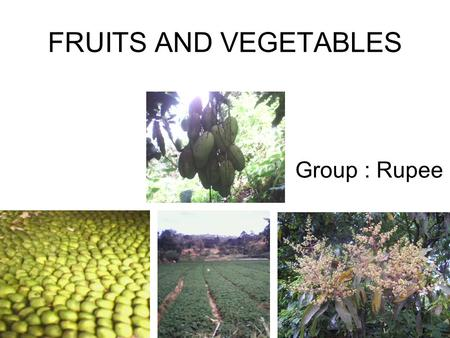 FRUITS AND VEGETABLES Group : Rupee.