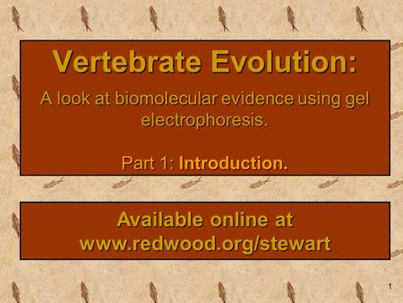 1 Vertebrate Evolution: A look at biomolecular evidence using gel electrophoresis. Part 1: Introduction. Available online at www.redwood.org/stewart.