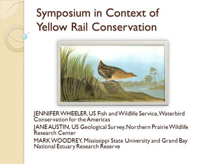 Symposium in Context of Yellow Rail Conservation JENNIFER WHEELER, US Fish and Wildlife Service, Waterbird Conservation for the Americas JANE AUSTIN, US.