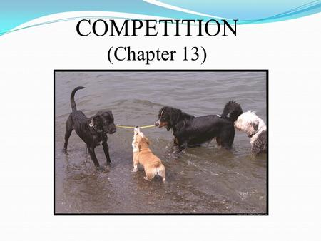 COMPETITION (Chapter 13). COMPETITION: INTRASPECIFIC versus INTERSPECIFIC.