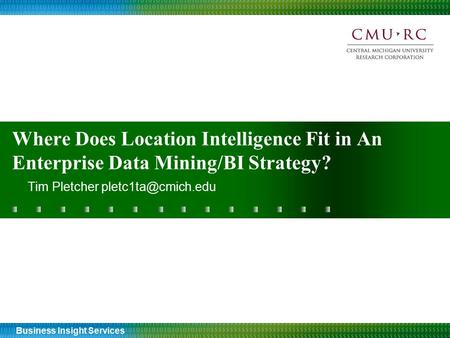 Business Insight Services Where Does Location Intelligence Fit in An Enterprise Data Mining/BI Strategy? Tim Pletcher