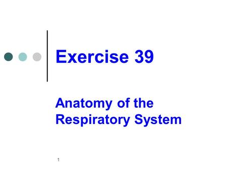 Exercise 39 Anatomy of the Respiratory System 1. Upper respiratory system structures 2.