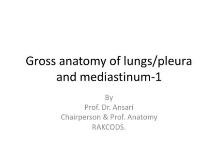 Gross anatomy of lungs/pleura and mediastinum-1 By Prof. Dr. Ansari Chairperson & Prof. Anatomy RAKCODS.
