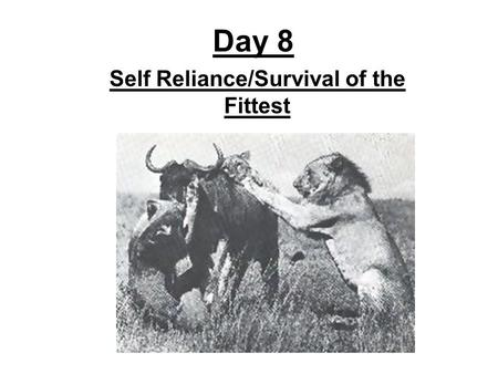 Day 8 Self Reliance/Survival of the Fittest. Revisit the Political Spectrum: -Which side of the spectrum usually favors change in a new direction? -Which.