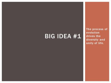 The process of evolution drives the diversity and unity of life. BIG IDEA #1.