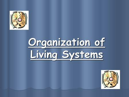Organization of Living Systems. I. Characteristics of Life What makes something alive? -has an orderly structure -reproduces -grows and develops -adjusts.