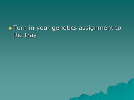  Turn in your genetics assignment to the tray. Other Inheritance Patterns.