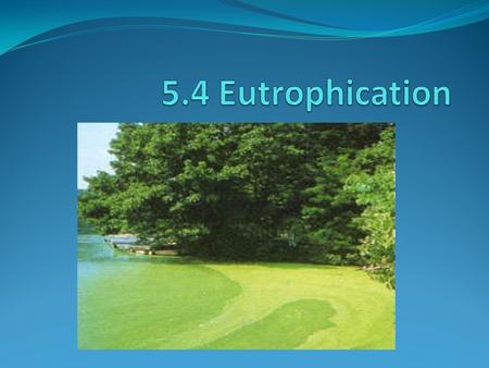 What is it? Eutrophication is the addition of excessive nutrients (animal waste, fertilizer, sewage) to a body of water (runoff) and causes excessive.