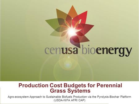 Production Cost Budgets for Perennial Grass Systems Agro-ecosystem Approach to Sustainable Biofuels Production via the Pyrolysis-Biochar Platform (USDA-NIFA.