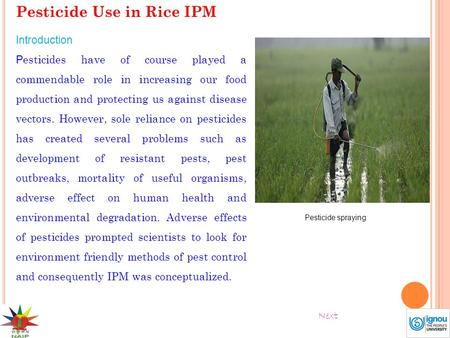 Pesticide Use in Rice IPM Introduction P esticides have of course played a commendable role in increasing our food production and protecting us against.