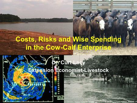 Costs, Risks and Wise Spending in the Cow-Calf Enterprise Dr. Curt Lacy Extension Economist-Livestock.