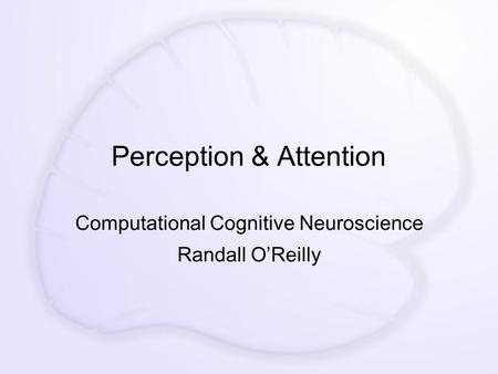 Perception & Attention Computational Cognitive Neuroscience Randall O'Reilly.