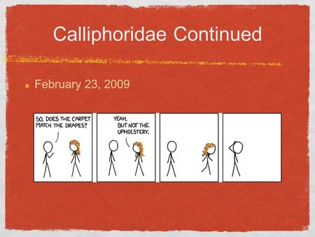 Calliphoridae Continued February 23, 2009. Dichotomous Key Used to identify classification of organsims Di=two Usually has two couplets Uses physical,