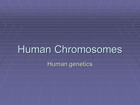 Human Chromosomes Human genetics. Human Genes and Chromosomes  Only about 2% of the DNA in your chromosomes functions as genes (transcribed into RNA).